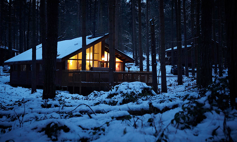 Save 10% at Forest Holidays \