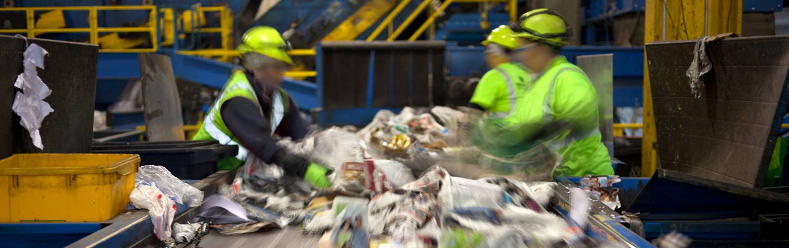 The myths dispelled! What actually happens to our recycling...