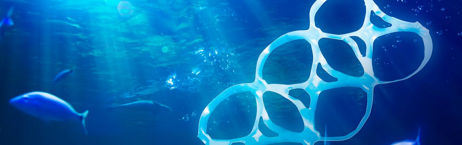 7 things you can do today to cut plastic waste in our seas