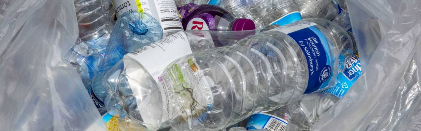 Greenredeem pilot collects over 60,000 plastic bottles in just 16 weeks