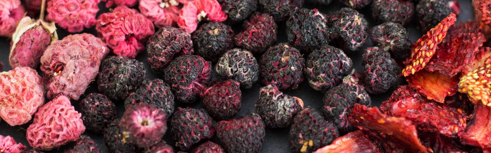 Easily foraged foods to dry for winter stores