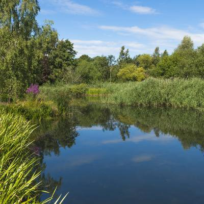 Encounter the natural world right here in London