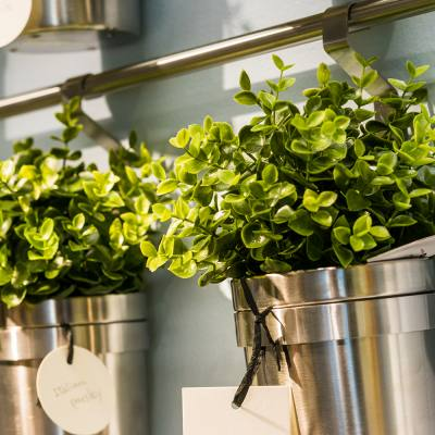 No space for houseplants? Think again!