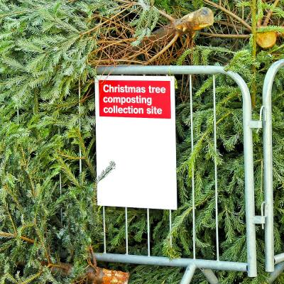 We solve your post-Christmas recycling conundrums