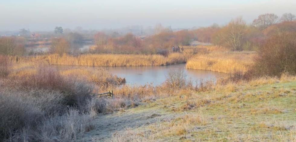 Dorney Wetlands