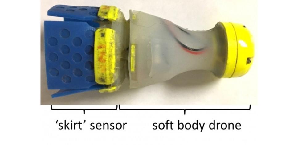 Leak detector robot