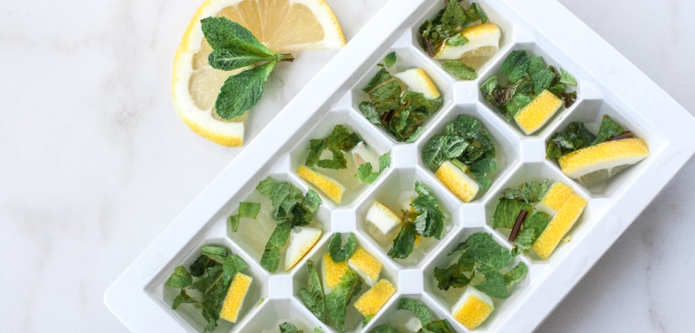Lemon and mint in an ice cube tray