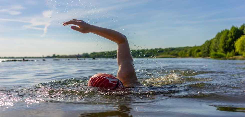 Swimmer doing front crawl in open river water on a sunny day, the green trees on the bank in the mid-distance