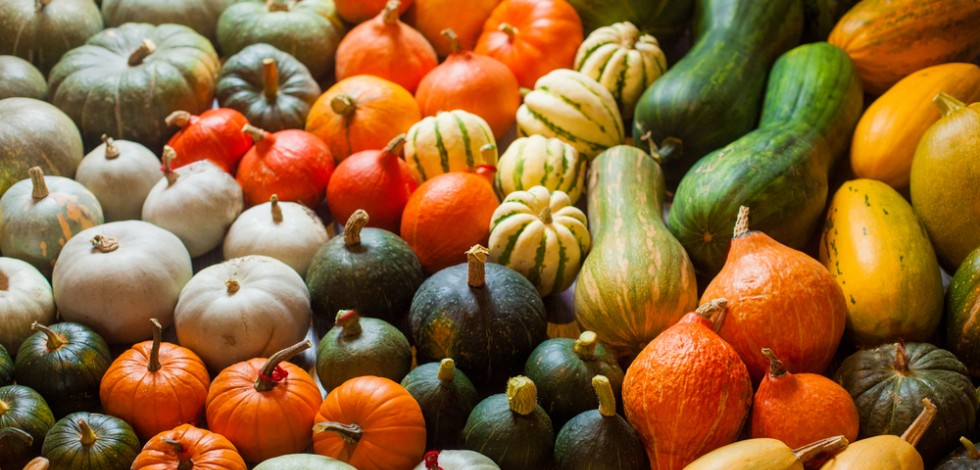 British-grown squashes